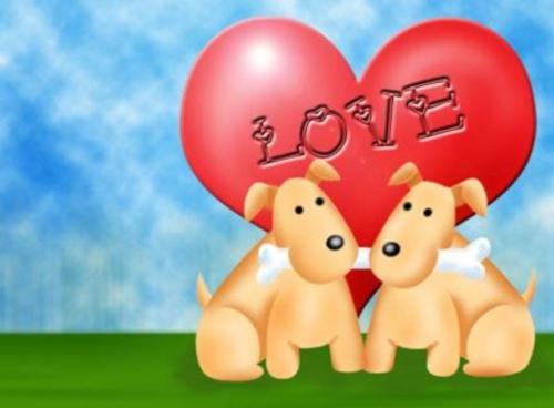 11 Imágenes de amor