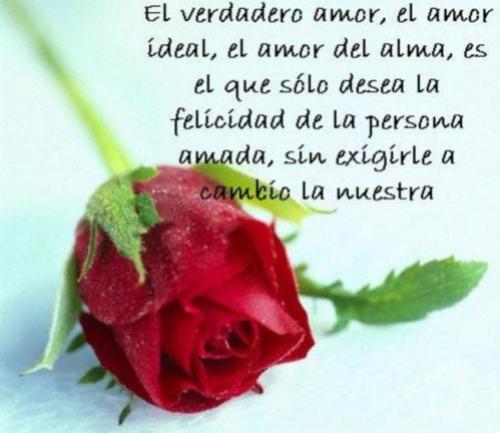 Frases de amor para el dia de los enamorados