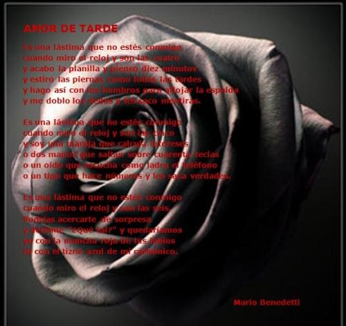 Amor de Tarde Poemas de Amor para Enamorar