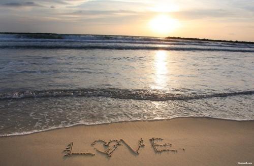 amor+playa  imágenes románticas de playa