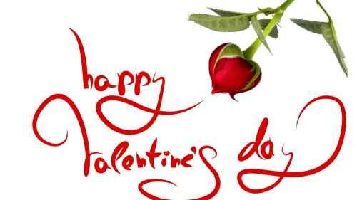 artleo.com 4399 Imagenes de Rosas para San Valentín