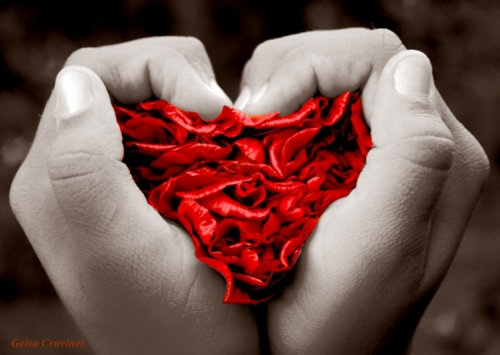 eu queria ser amor geisa Imágenes de amor
