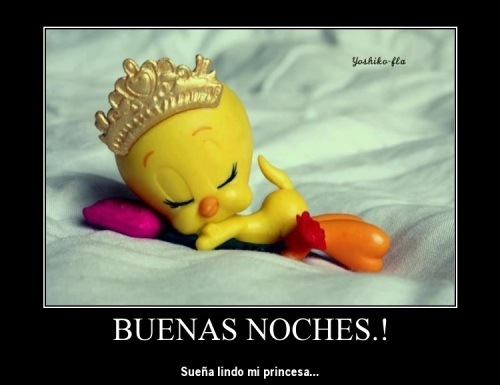Buenas noches princesa poema