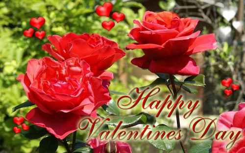 happyvalentineday ecard wallpaper 7 Imagenes de Rosas para San Valentín