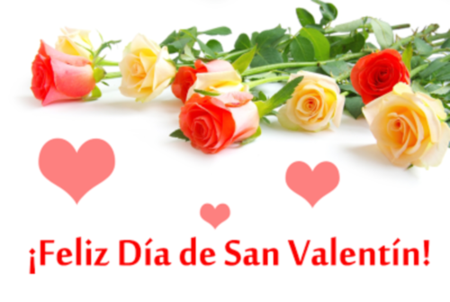 rosas de colores para el dia del amor y la amistad 14 de febrero san valentin postales gratis con mensaje Imagenes de Rosas para San Valentín