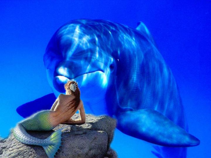 Sirena o ballena