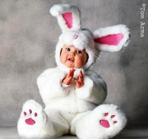 Tiernos Bebes disfrazados