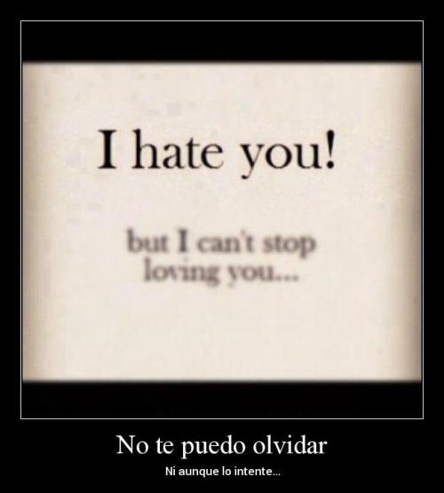 No te puedo olvidar
