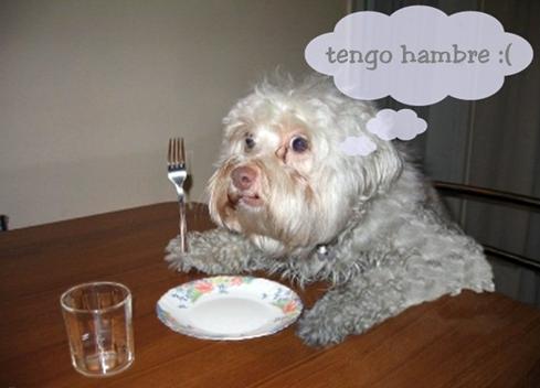 hambre6