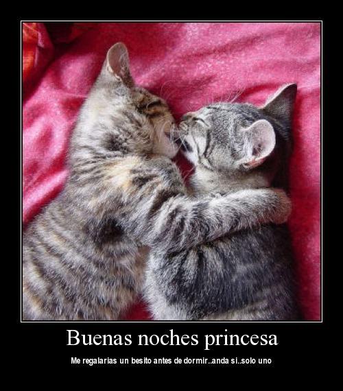 Buenas noches princesa